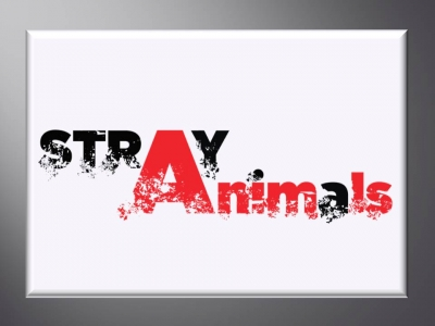 Stray Animals